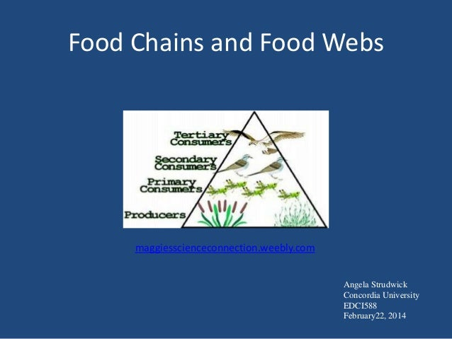 Food Chains and Food Webs  maggiesscienceconnection.weebly.com Angela Strudwick Concordia University EDCI588 February22, 2...