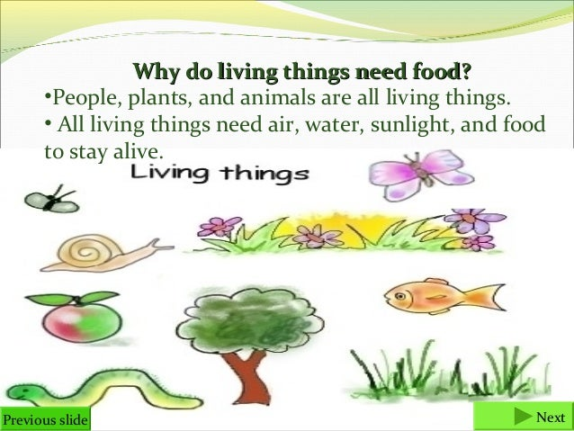 why do living things need energy Life is the quality that distinguishes living things composed of living cells from nonliving objects or those that have died energy, and dynamics how and why do organisms interact with their environment and what are the effects of these all living systems need matter and energy.