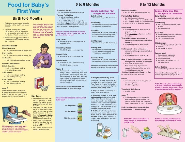 Food For Baby's 6 to 8 Months