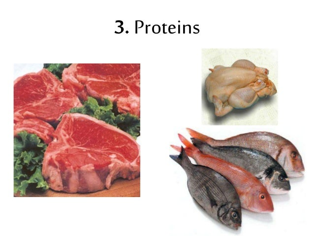 3. Proteins