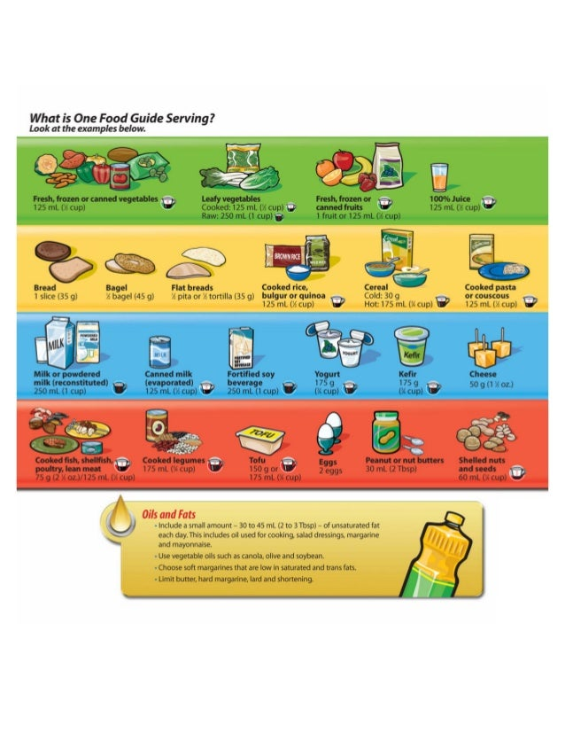 food pyramid printable worksheets