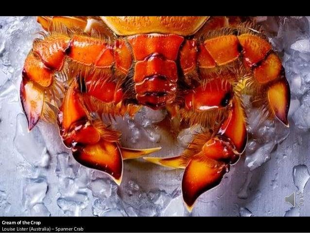 Cream of the Crop Louise Lister (Australia) – Spanner Crab