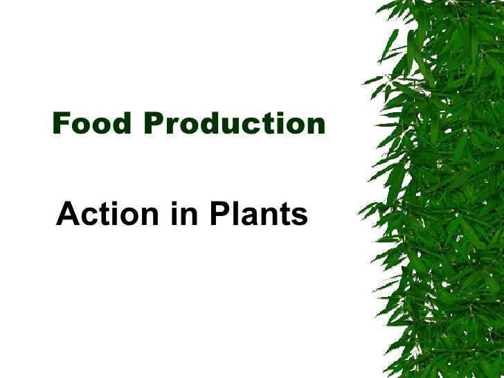 Food Production & The Environment