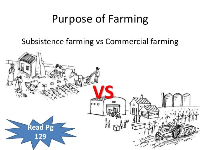 commercial agriculture vs subsistence agriculture South africas dual agricultural economy covers both commercial and subsistence  production.