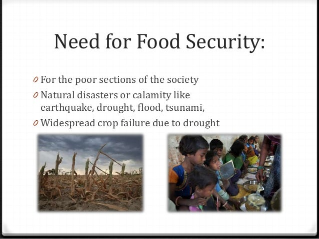 an essay on food security and