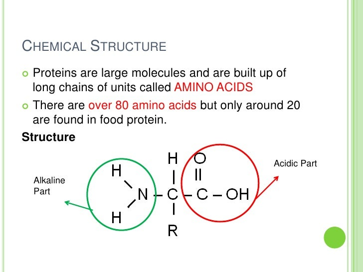 Chemical Propertys Of Protein