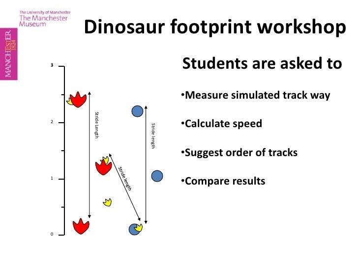 Dinosaur footprint workshop<br />Students are asked to<br /><ul><li>Measure simulated track way