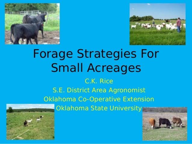 Forage Strategies ForSmall AcreagesC.K. RiceS.E. District Area AgronomistOklahoma Co-Operative ExtensionOklahoma State Uni...