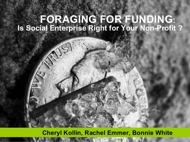 Foraging for Funding Presentation