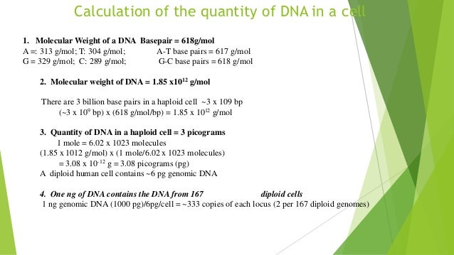 Genomic DNA amount in diploid cell - Human Homo sapiens - BNID