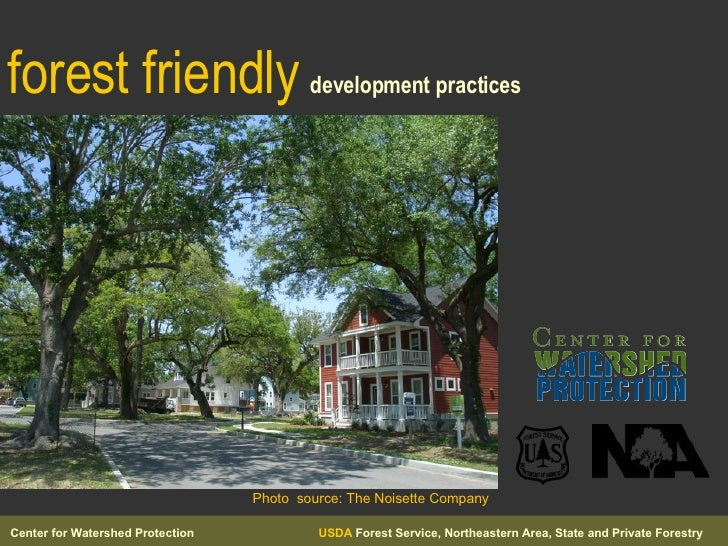 forest friendly   development practices Photo  source: The Noisette Company