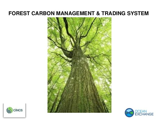 Forest carbon management & trading system