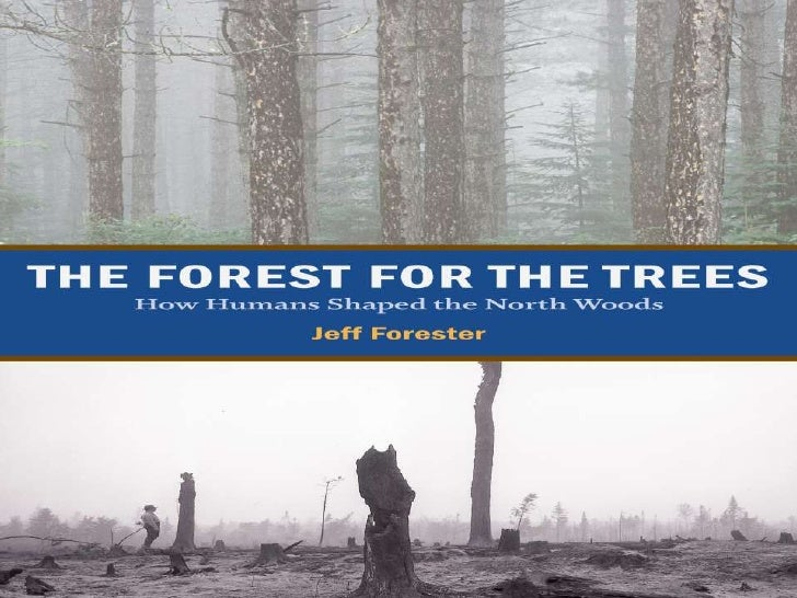 Jeff Forester: How Humans Shaped the North Woods