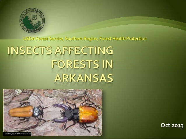 Forest Health Panel - Insects - USFS and Jim Northum, AFC