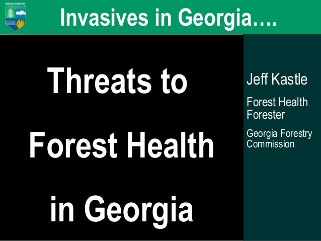 Forest Health, Forest Action Plan