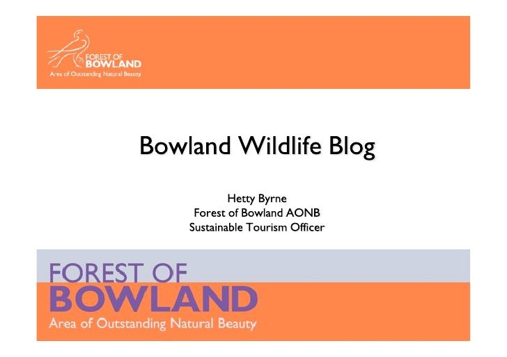 Forest Of Bowland - Aggregate Blog