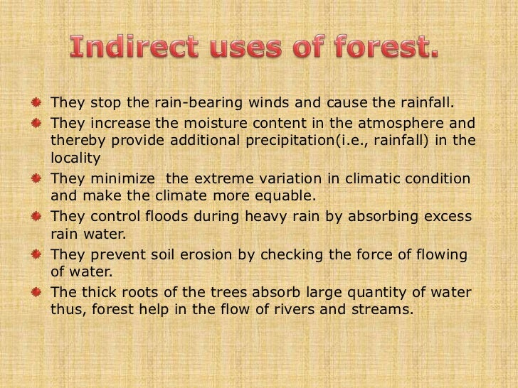uses of forest essay Importance of forests in urdu essay benefits of forests in pakistan forests information uses government paid due attention to the promotion of forests.