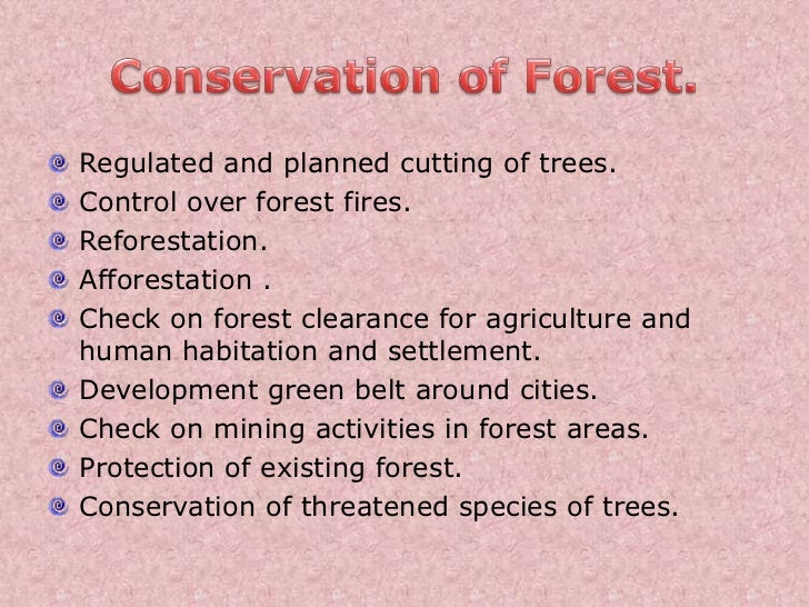 Essay on Conservation of Forests