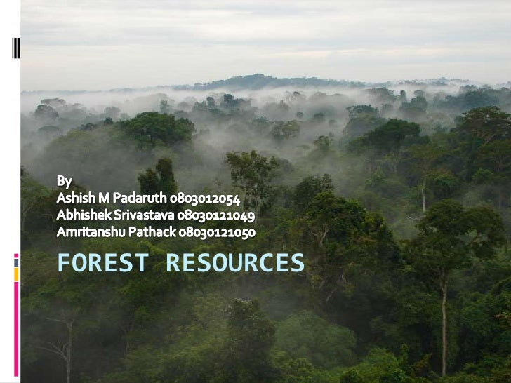 FOREST RESOURCES	<br />By <br />Ashish M Padaruth 0803012054<br />AbhishekSrivastava 08030121049<br />AmritanshuPathack 08...