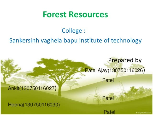 Forest Resources College : Sankersinh vaghela bapu institute of technology Prepared by Patel Ajay(130750116026) Patel Anki...