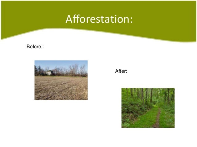 afforestation and deforestation in india Deforestation, afforestation, reforestation on grow-tr eescom india approximately 45% of india's land is degraded primarily due to deforestation, unsustainable agricultural practices, mining and excessive groundwater extraction.