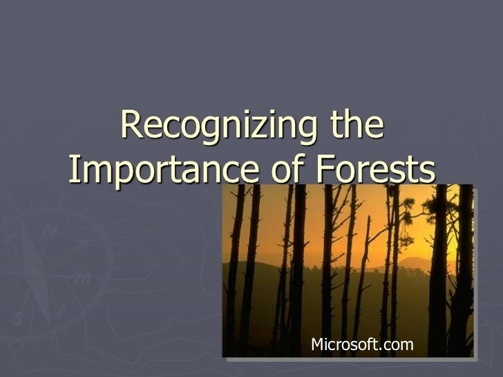 Recognizing the Importance of Forests<br />Microsoft.com<br />