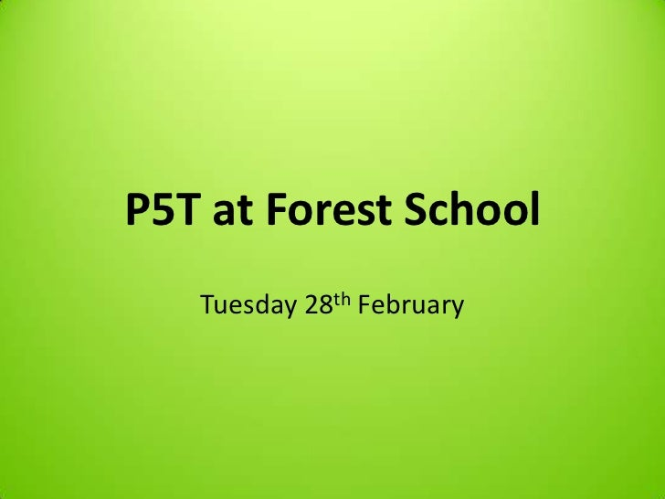 P5T at Forest School   Tuesday 28th February