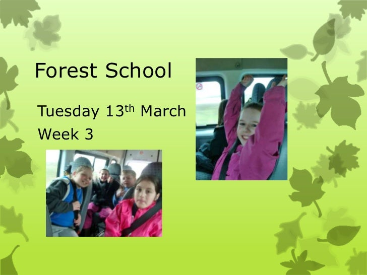 Forest schools  making bird hides