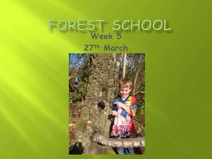 Forest school week 5