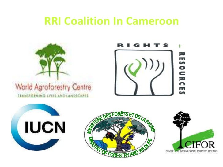 MINISTERE DES FORÊTS ET DE LA FAUNE<br />MINISTRY OF FORESTRY AND WILDLIFE<br />RRI Coalition In Cameroon<br />