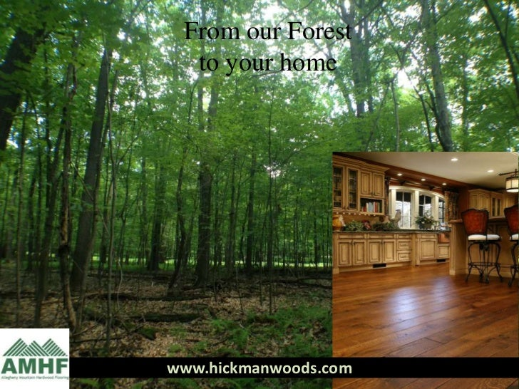 From Our Forest to Your Floor