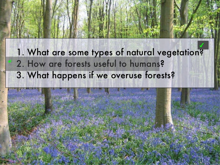 ✔    1. What are some types of natural vegetation?✐    2. How are forests useful to humans?    3. What happens if we overu...