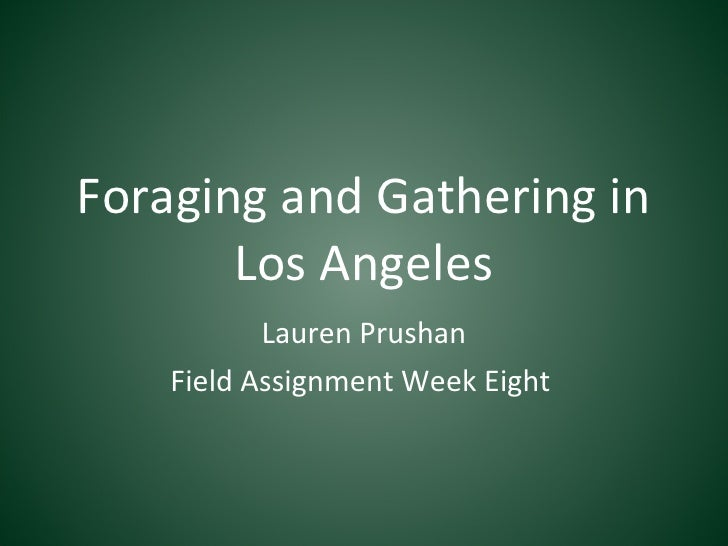 Foraging and Gathering in Los Angeles Lauren Prushan Field Assignment Week Eight