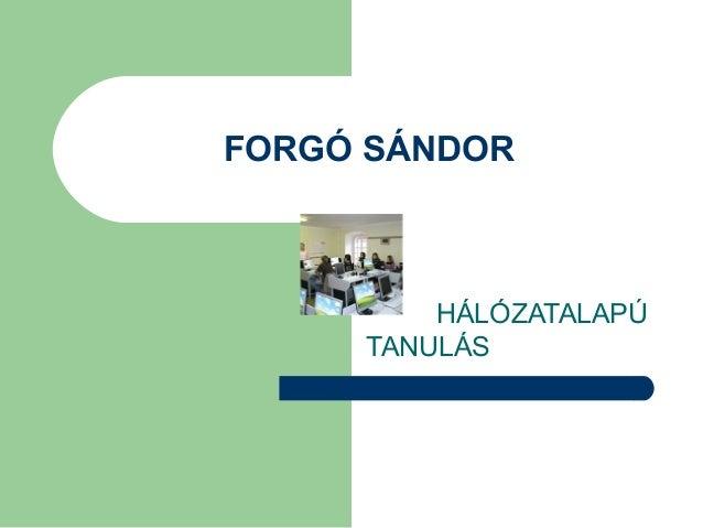 FORGÓ SÁNDOR HÁLÓZATALAPÚ TANULÁS