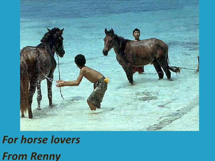 For horse lovers<br />From Renny<br />