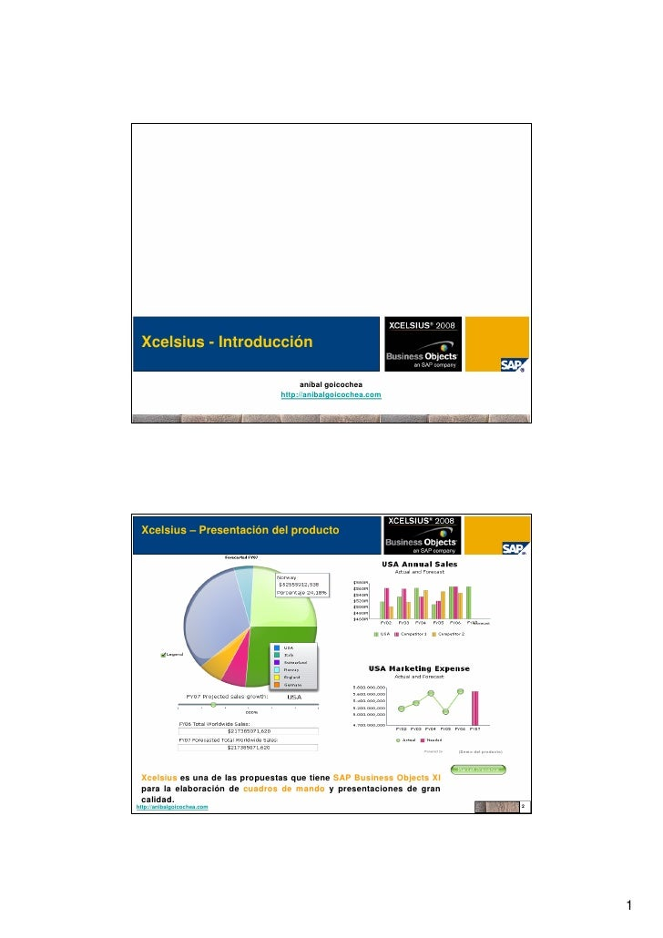 Xcelsius - SAP Business Objects XI