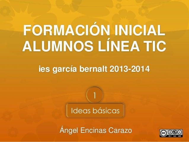 Formación inicial alumnos Línea TIC en ESO (1)
