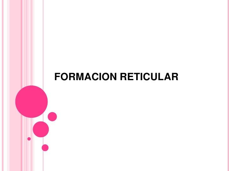Formacion reticular expo