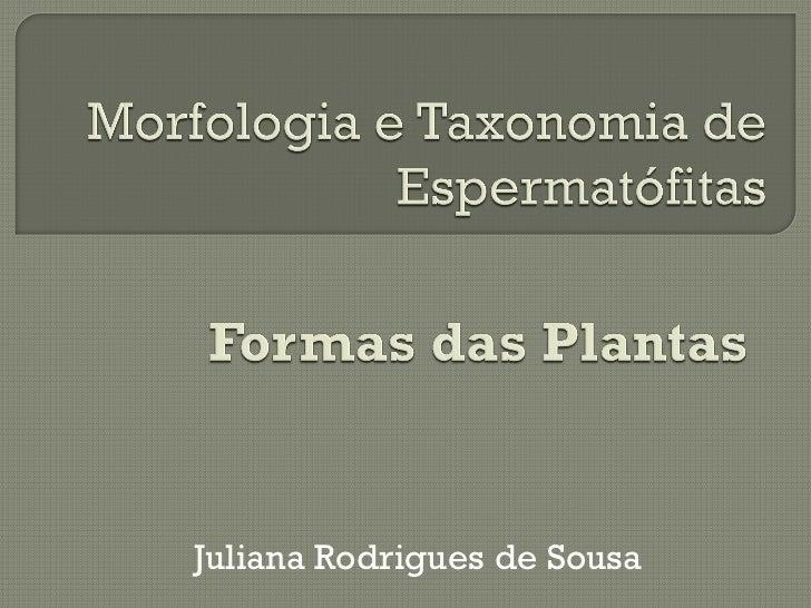 Juliana Rodrigues de Sousa