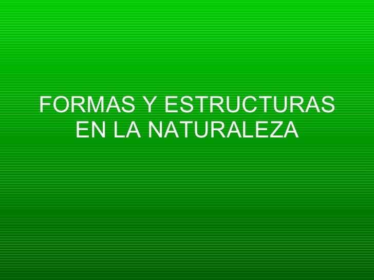 Formas y estructuras en la naturaleza