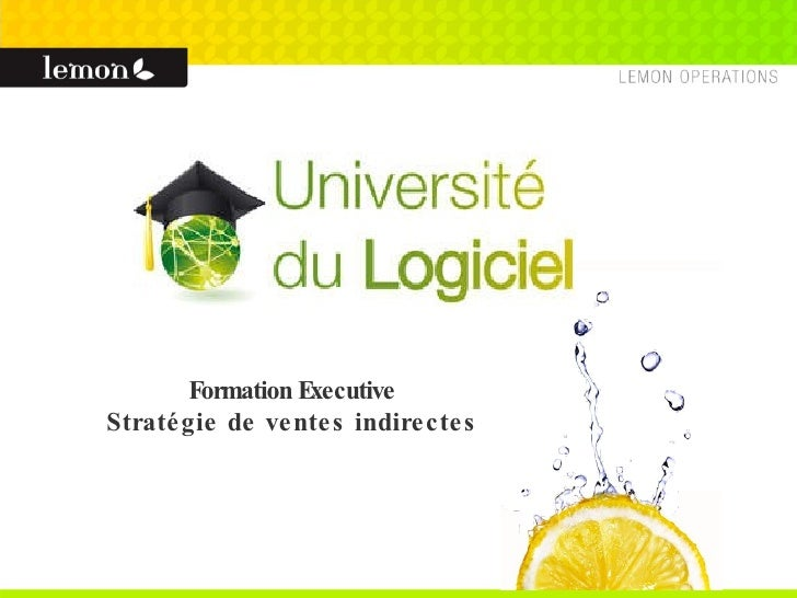 Formation Executive Stratégie de ventes indirectes