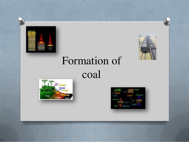 Formation Of Coal Web Version