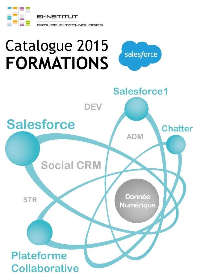 Salesforce STR Salesforce1 Chatter ADM Plateforme Collaborative DEV Social CRM Donnée Numérique Catalogue 2015 FORMATIONS