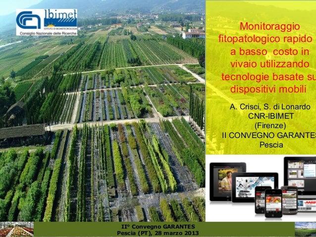 Monitoraggio                             fitopatologico rapido e                                 a basso costo in         ...