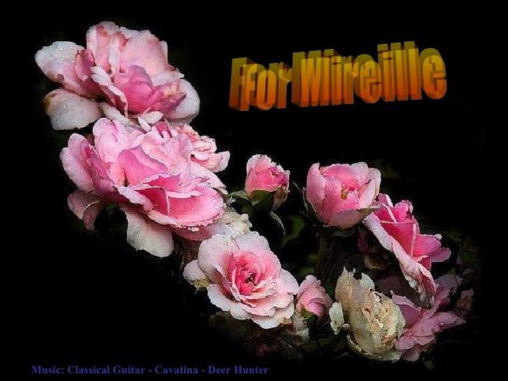 For Mireille Music: Classical Guitar - Cavatina - Deer Hunter