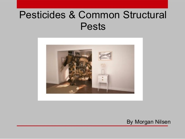 Pesticides & Common Structural Pests  By Morgan Nilsen