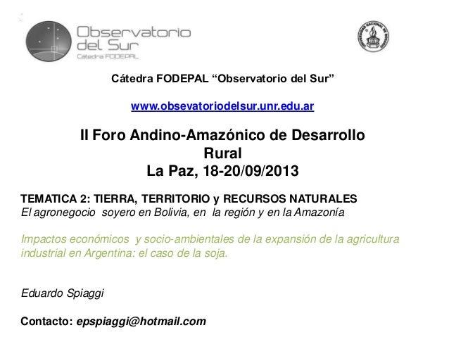 "Cátedra FODEPAL ""Observatorio del Sur"" www.obsevatoriodelsur.unr.edu.ar II Foro Andino-Amazónico de Desarrollo Rural La Pa..."