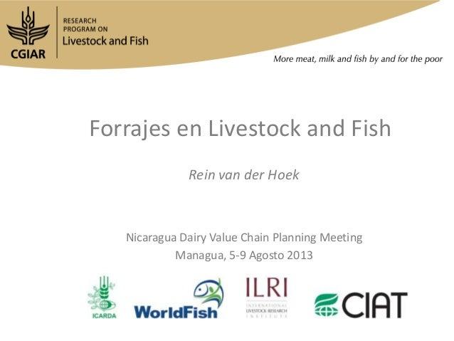 Forrajes en Livestock and Fish Rein van der Hoek Nicaragua Dairy Value Chain Planning Meeting Managua, 5-9 Agosto 2013