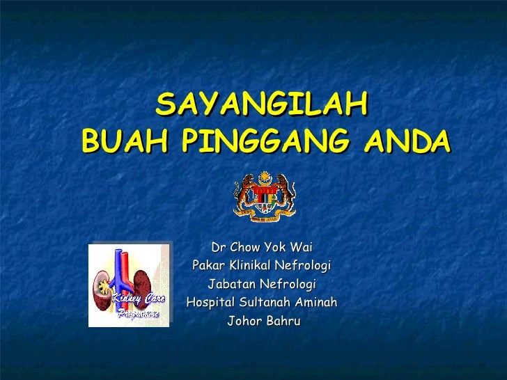 SAYANGILAH  BUAH PINGGANG ANDA Dr Chow Yok Wai Pakar Klinikal Nefrologi Jabatan Nefrologi Hospital Sultanah Aminah Johor B...
