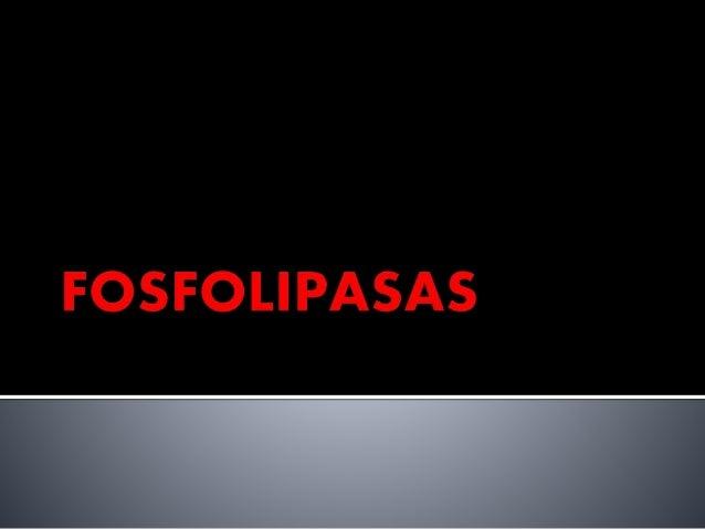  Fosfolipasa 𝐴1: primer acilo y glicerol  Fosfolipasa 𝐴2: segundo acilo y glicerol  Fosfolipasa B: primer acilo y segun...